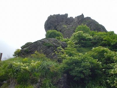 sugawa2.jpg